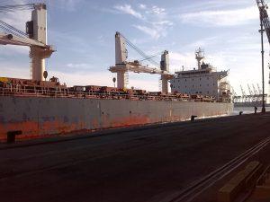 Fumigación de barcos - Control de plagas