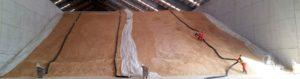 Fumigación de almacenes Valencia - Control de plagas