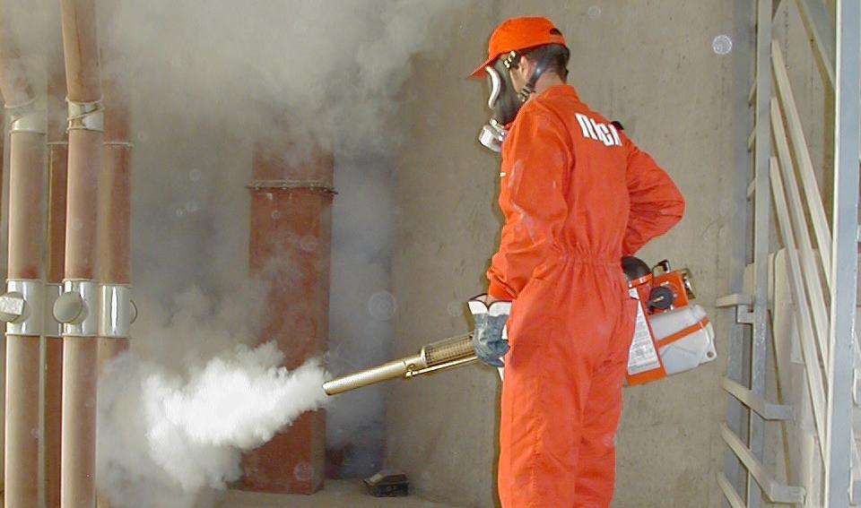 Empresas de fumigación en Valencia