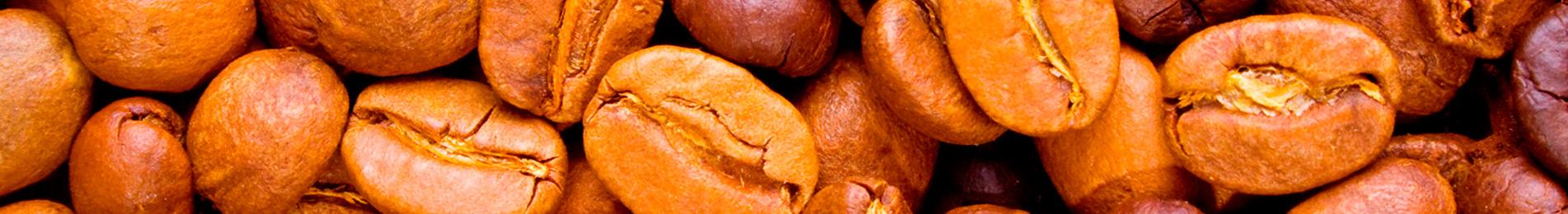 Control de plagas en la industria alimentaria - Fumigaciones Valencia