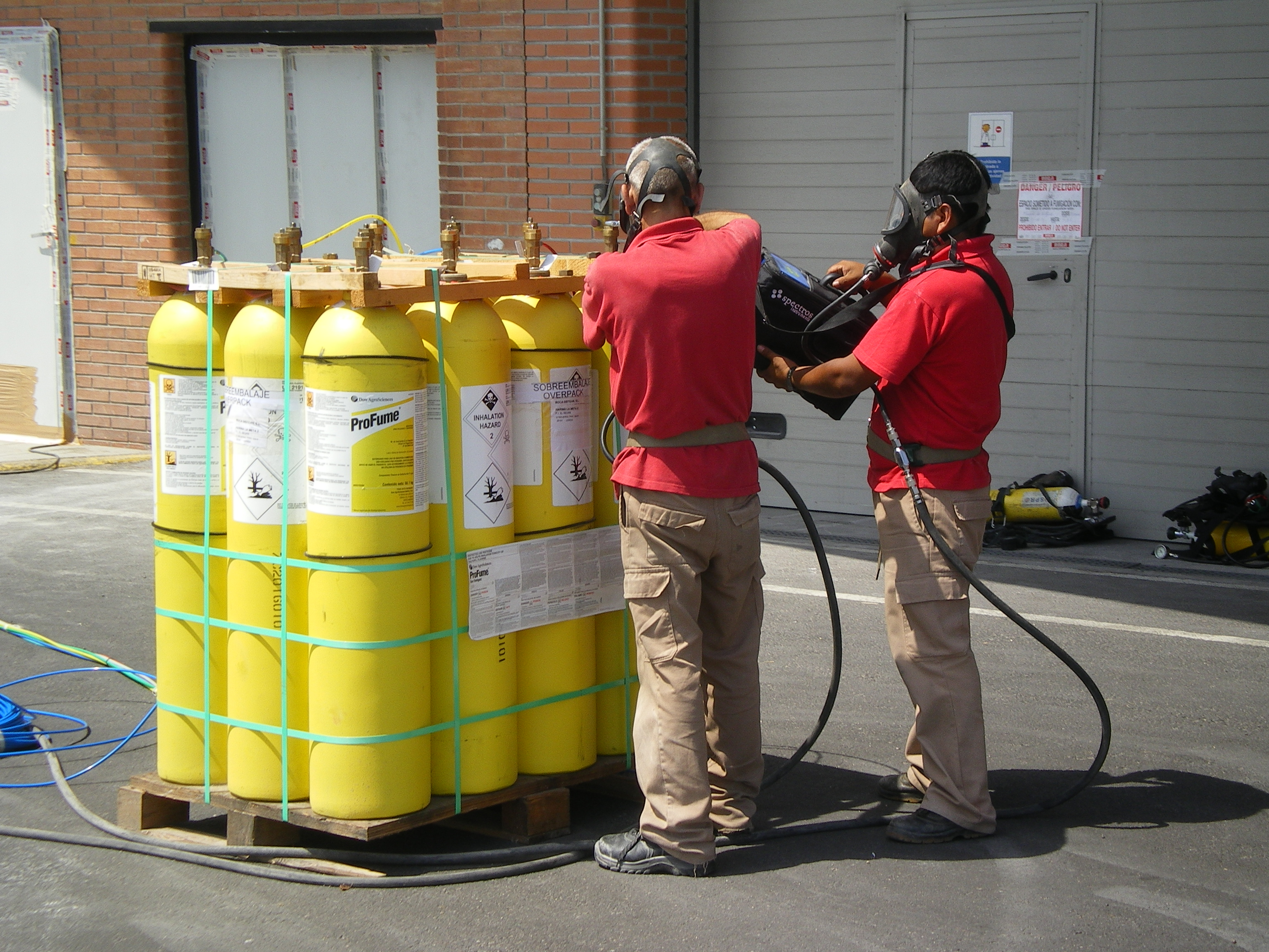 Desinsectación - Empresa de fumigación y control de plagas