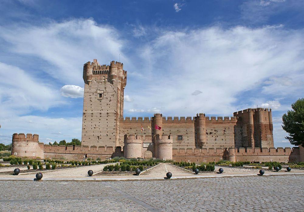 Control de plagas y fumigaciones en Valladolid