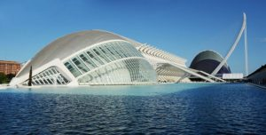Empresa de control de plagas en Valencia