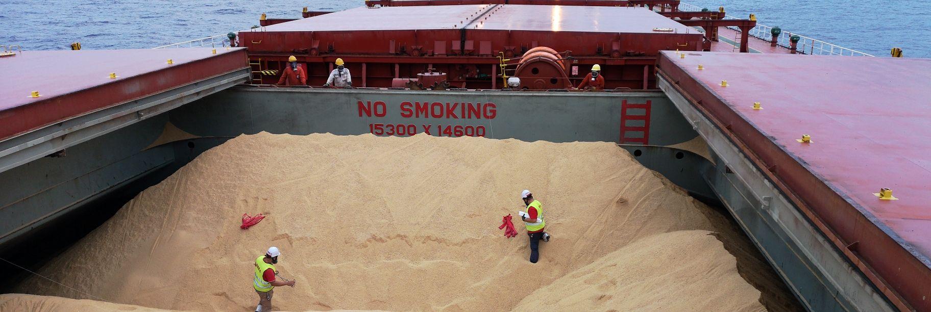 Fumigación de barcos - fumigación de buques